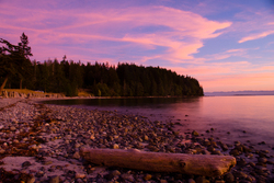 Pink and Purple - Cortes Island  photo