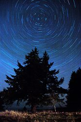 North Star - Cortes Island Star photo